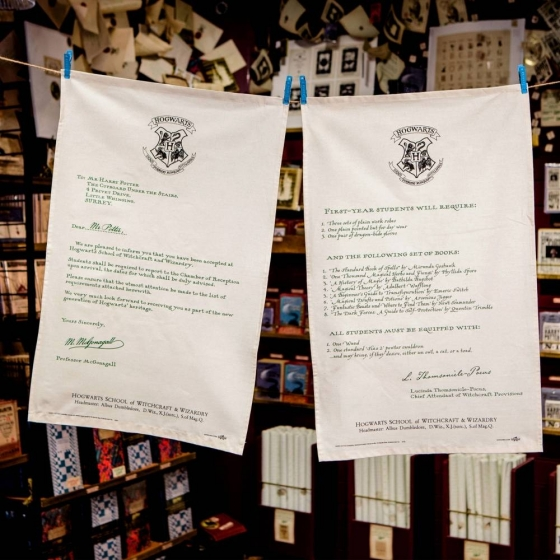 Lot de 2 Torchons, linges de cuisine en coton Minalima sous licence officielle Harry Potter.