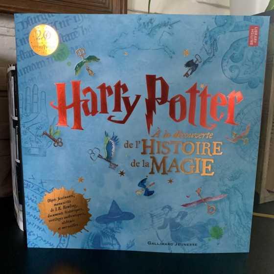 Harry Potter : à la découverte de l'histoire de la magie