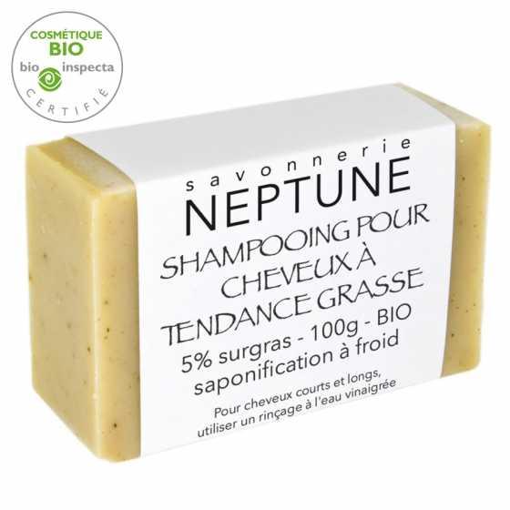 Shampoo für fettiges Haar - bio